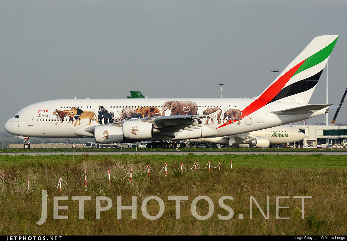 One of Emirates' two United for Wildlife A380s.