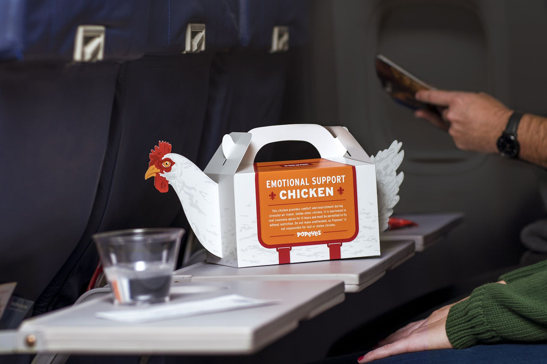 Popeyes' emotional support chicken.